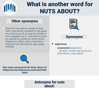 nuts about, synonym nuts about, another word for nuts about, words like nuts about, thesaurus nuts about