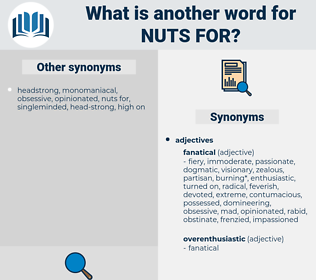nuts for, synonym nuts for, another word for nuts for, words like nuts for, thesaurus nuts for
