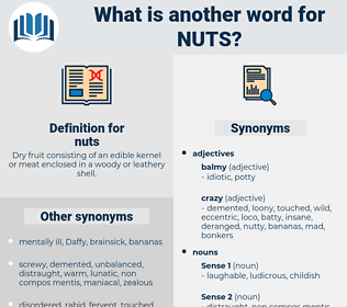 nuts, synonym nuts, another word for nuts, words like nuts, thesaurus nuts