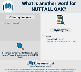 Nuttall Oak, synonym Nuttall Oak, another word for Nuttall Oak, words like Nuttall Oak, thesaurus Nuttall Oak