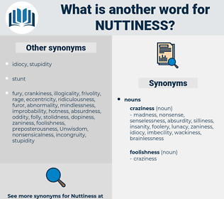 nuttiness, synonym nuttiness, another word for nuttiness, words like nuttiness, thesaurus nuttiness