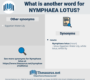 Nymphaea Lotus, synonym Nymphaea Lotus, another word for Nymphaea Lotus, words like Nymphaea Lotus, thesaurus Nymphaea Lotus