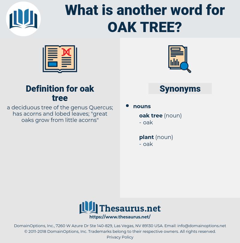 oak tree, synonym oak tree, another word for oak tree, words like oak tree, thesaurus oak tree