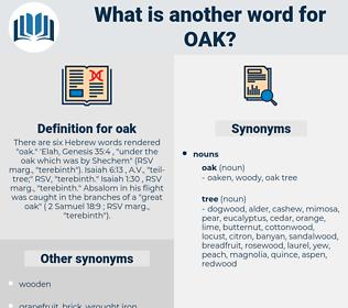 oak, synonym oak, another word for oak, words like oak, thesaurus oak