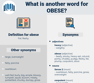obese, synonym obese, another word for obese, words like obese, thesaurus obese