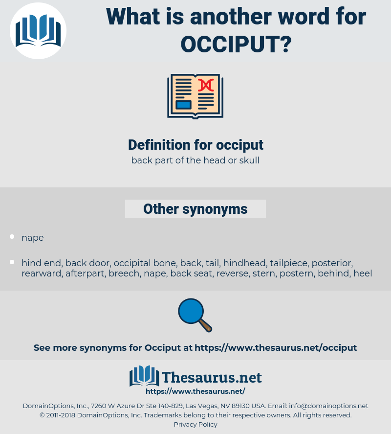 occiput, synonym occiput, another word for occiput, words like occiput, thesaurus occiput