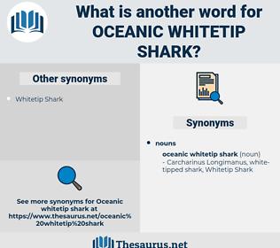 Oceanic Whitetip Shark, synonym Oceanic Whitetip Shark, another word for Oceanic Whitetip Shark, words like Oceanic Whitetip Shark, thesaurus Oceanic Whitetip Shark
