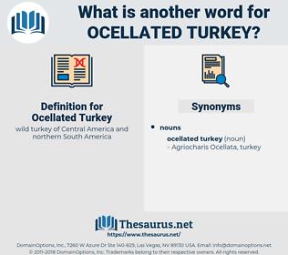 Ocellated Turkey, synonym Ocellated Turkey, another word for Ocellated Turkey, words like Ocellated Turkey, thesaurus Ocellated Turkey