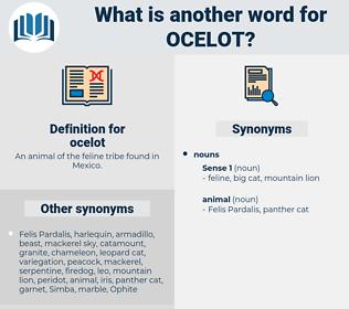 ocelot, synonym ocelot, another word for ocelot, words like ocelot, thesaurus ocelot