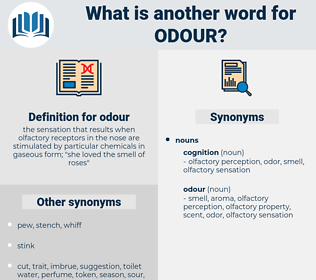 odour, synonym odour, another word for odour, words like odour, thesaurus odour