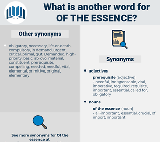 of the essence, synonym of the essence, another word for of the essence, words like of the essence, thesaurus of the essence