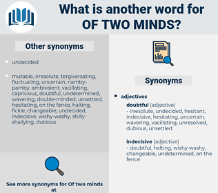 of two minds, synonym of two minds, another word for of two minds, words like of two minds, thesaurus of two minds