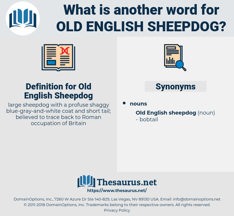 Old English Sheepdog, synonym Old English Sheepdog, another word for Old English Sheepdog, words like Old English Sheepdog, thesaurus Old English Sheepdog