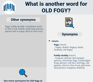 old fogy, synonym old fogy, another word for old fogy, words like old fogy, thesaurus old fogy