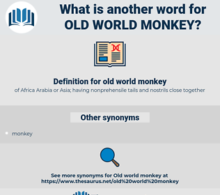 old world monkey, synonym old world monkey, another word for old world monkey, words like old world monkey, thesaurus old world monkey