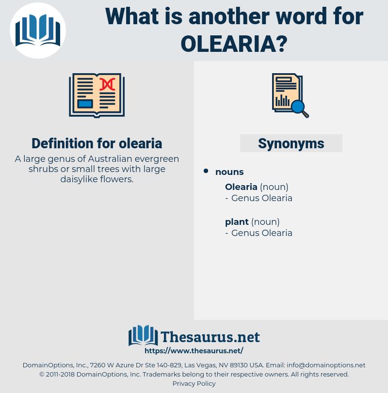 olearia, synonym olearia, another word for olearia, words like olearia, thesaurus olearia