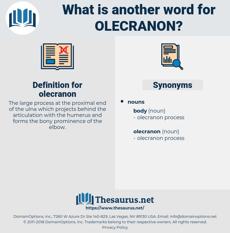olecranon, synonym olecranon, another word for olecranon, words like olecranon, thesaurus olecranon