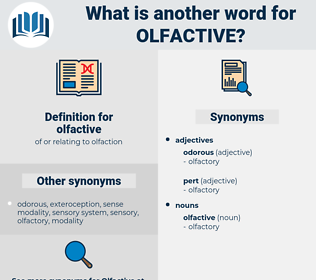 olfactive, synonym olfactive, another word for olfactive, words like olfactive, thesaurus olfactive