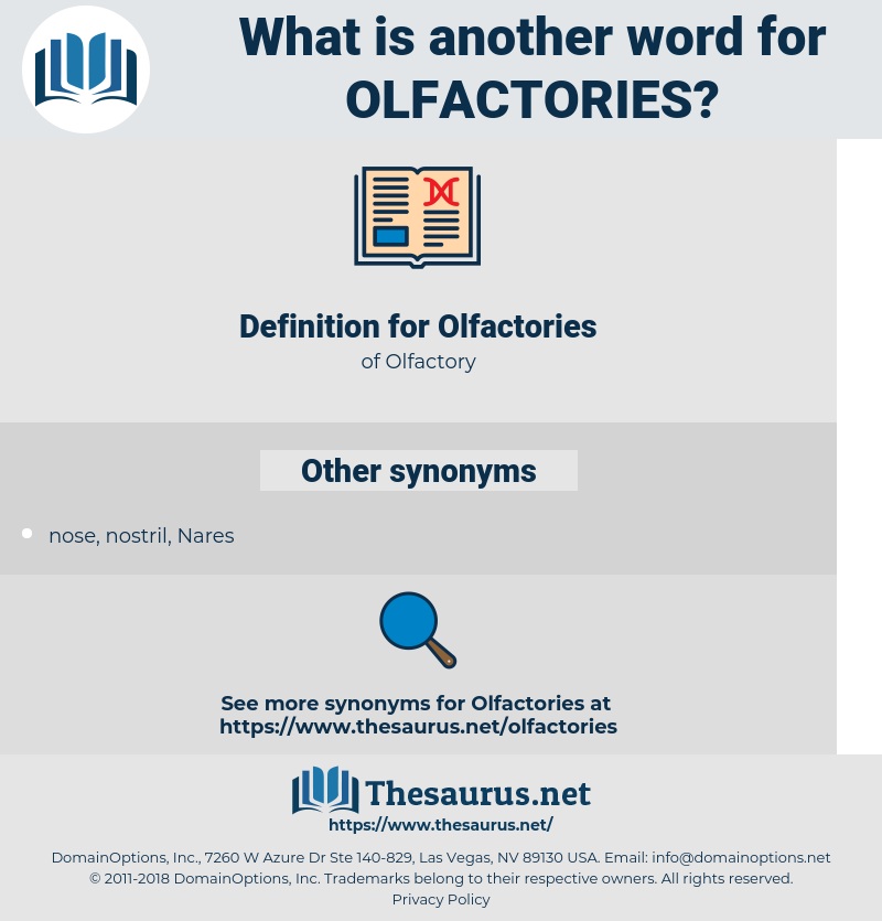 Olfactories, synonym Olfactories, another word for Olfactories, words like Olfactories, thesaurus Olfactories