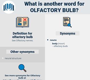 olfactory bulb, synonym olfactory bulb, another word for olfactory bulb, words like olfactory bulb, thesaurus olfactory bulb