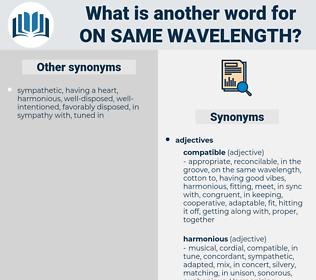 on same wavelength, synonym on same wavelength, another word for on same wavelength, words like on same wavelength, thesaurus on same wavelength