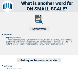 on small scale, synonym on small scale, another word for on small scale, words like on small scale, thesaurus on small scale