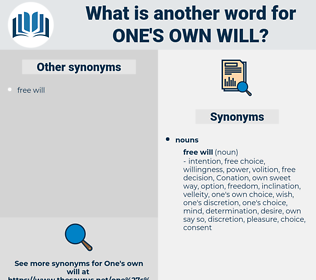 one's own will, synonym one's own will, another word for one's own will, words like one's own will, thesaurus one's own will