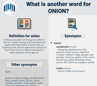 onion, synonym onion, another word for onion, words like onion, thesaurus onion
