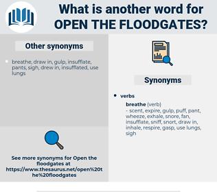 open the floodgates, synonym open the floodgates, another word for open the floodgates, words like open the floodgates, thesaurus open the floodgates