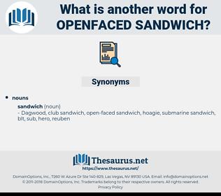 openfaced sandwich, synonym openfaced sandwich, another word for openfaced sandwich, words like openfaced sandwich, thesaurus openfaced sandwich