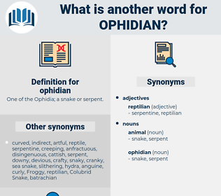 ophidian, synonym ophidian, another word for ophidian, words like ophidian, thesaurus ophidian