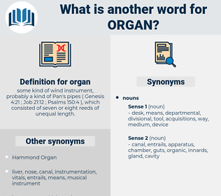 organ, synonym organ, another word for organ, words like organ, thesaurus organ