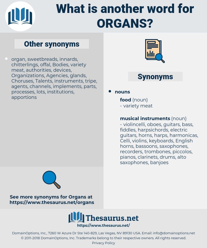 organs, synonym organs, another word for organs, words like organs, thesaurus organs