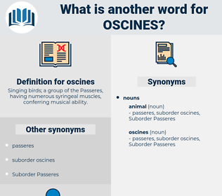 oscines, synonym oscines, another word for oscines, words like oscines, thesaurus oscines