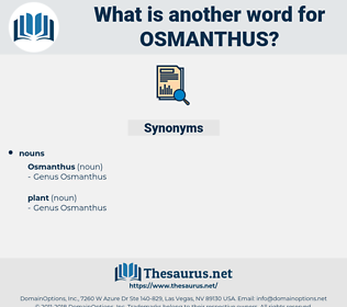 osmanthus, synonym osmanthus, another word for osmanthus, words like osmanthus, thesaurus osmanthus