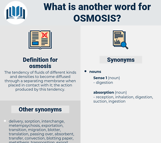 osmosis, synonym osmosis, another word for osmosis, words like osmosis, thesaurus osmosis