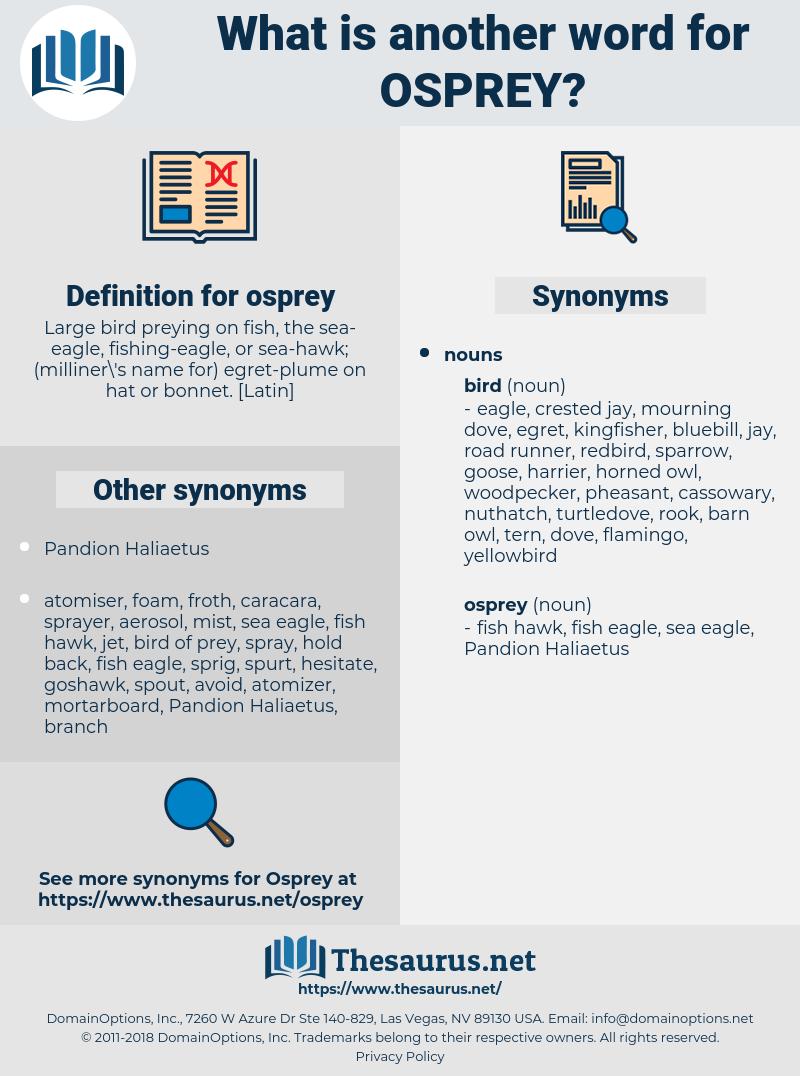 osprey, synonym osprey, another word for osprey, words like osprey, thesaurus osprey