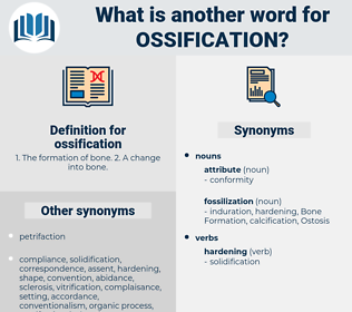 ossification, synonym ossification, another word for ossification, words like ossification, thesaurus ossification