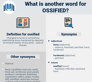 ossified, synonym ossified, another word for ossified, words like ossified, thesaurus ossified