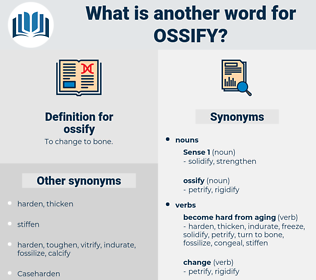 ossify, synonym ossify, another word for ossify, words like ossify, thesaurus ossify