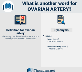 ovarian artery, synonym ovarian artery, another word for ovarian artery, words like ovarian artery, thesaurus ovarian artery