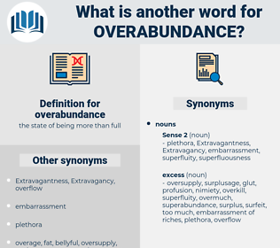 overabundance, synonym overabundance, another word for overabundance, words like overabundance, thesaurus overabundance