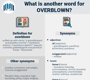 overblown, synonym overblown, another word for overblown, words like overblown, thesaurus overblown