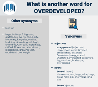 overdeveloped, synonym overdeveloped, another word for overdeveloped, words like overdeveloped, thesaurus overdeveloped