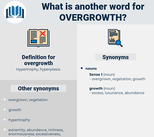 overgrowth, synonym overgrowth, another word for overgrowth, words like overgrowth, thesaurus overgrowth