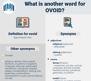 ovoid, synonym ovoid, another word for ovoid, words like ovoid, thesaurus ovoid