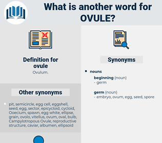 ovule, synonym ovule, another word for ovule, words like ovule, thesaurus ovule
