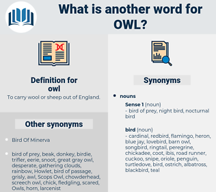 owl, synonym owl, another word for owl, words like owl, thesaurus owl