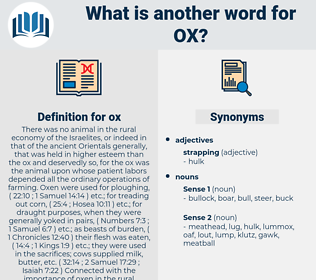 ox, synonym ox, another word for ox, words like ox, thesaurus ox