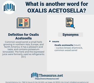 Oxalis Acetosella, synonym Oxalis Acetosella, another word for Oxalis Acetosella, words like Oxalis Acetosella, thesaurus Oxalis Acetosella